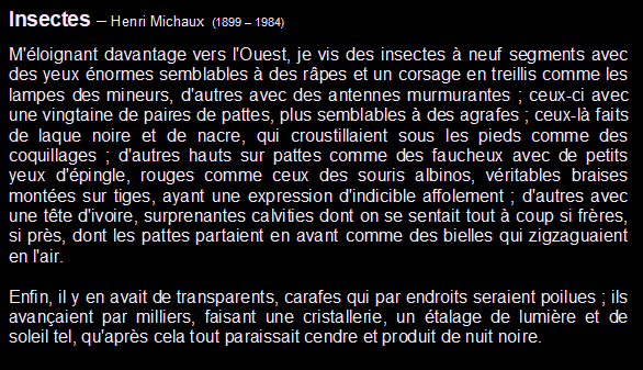 Michaux